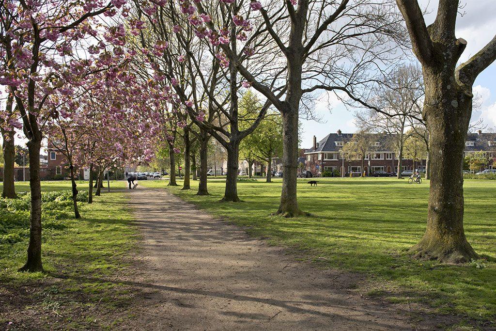 Buurtinformatie-Planetenwijk-Zaanenparkt-Overspaern-Makelaardij-buurt-makelaar